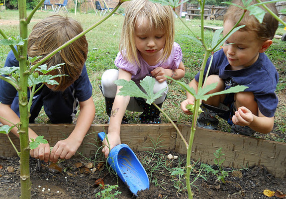 5 steps to creating your first garden with kids the for Gardening for kids